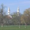 Northern Schönfeldwiese