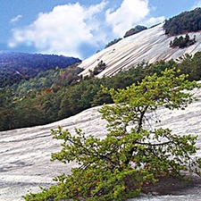 View Of Stone Mountain State Park