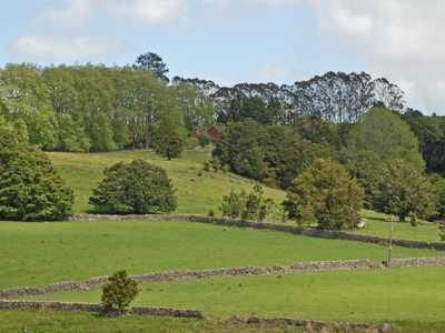 Stone Walls Near Glenbervie