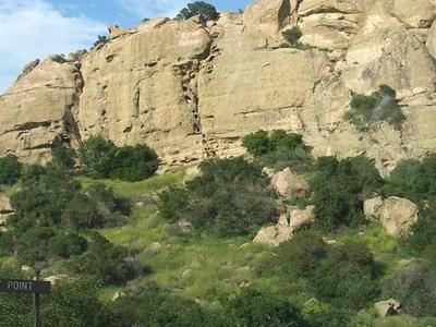 Stoney  Point  California
