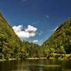 Stony Creek Clove