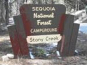 Sequoia Stony Creek Campground