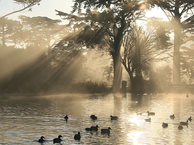 Stow Lake