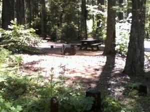 Campground Fresa