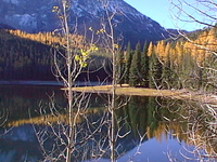 Malheur National Forest