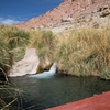 Puritama Hot Springs Half Day
