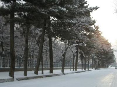 Street In  Kabul During Winter