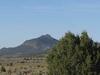 Sulphur Spring Range Nevada