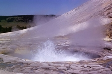 Sulphur Spring - Yellowstone - USA
