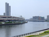 Sumida River From Suijin Bridge In Arakawa