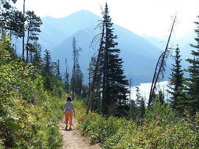 Summit Trail - Glacier - Montana - USA