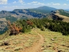 Summit Trail In Modoc National Forest
