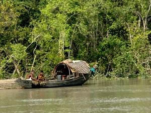 Sundarbans Río Lanza