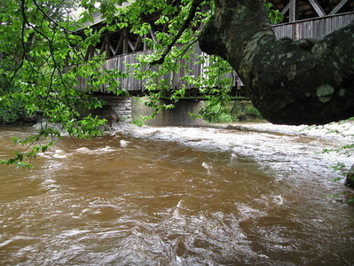 Sunday River In Rainfall