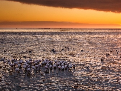 Sundown At Walvis Bay - Namibia