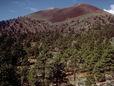 Sunset Crater With Ponderosa Pines On The Slope