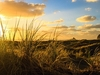 Sunset @ Karekare Beach - Auckland - North Island NZ