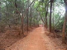 Sunset Point Trail - Matheran - Maharashtra - India
