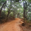 Sunset Point Trail Walkway Bridge - Matheran - Maharashtra - India
