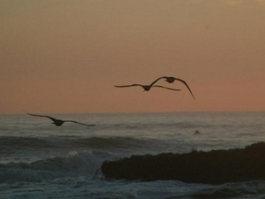 Sunset Beach State