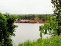 Suoi Lam