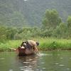 Suoi Yen River View