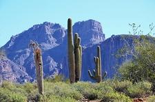 Superstition Mountains Landscape AZ