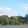 Susan Island Clarence River