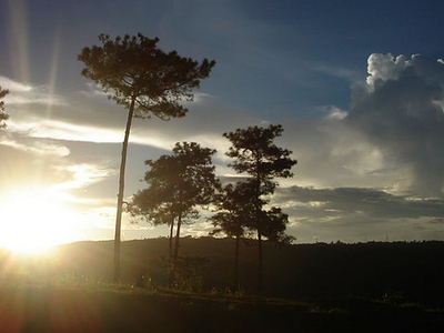Sweet Falls Shillong