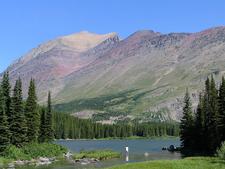 Swiftcurrent Lake Nature Trail - Glacier - Montana - USA