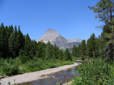 Swiftcurrent Nature Trail - Glacier - Montana - USA
