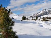 Parque Nacional da Suíça