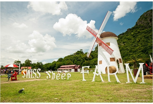 Bangkok, Sheep Farm, Hua Hin Package Photos