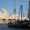 Sydney Harbour Afternoon Tall Ship Discovery Cruise