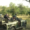Sabi Sand Private Game Reserve