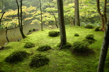 Moss Garden Of Saihō-ji