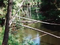 Volchya River