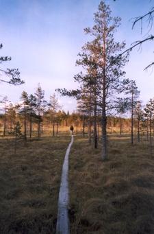 Salamajarvi National Park