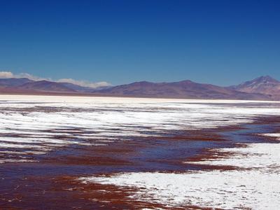Maricunga Salt Flat With Copiapó Volcano