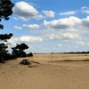 De Hoge Veluwe National Park