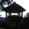 Satkosia Gorge Sanctuary Tikarpara Orissa 1