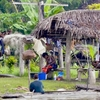 Snapshot Of The Daily Life Of The Villagers