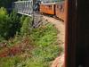 Veteran Train On Setesdalsbanen
