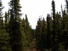 Sevenlakes Alaska