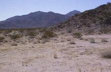 Sheephole Mountains
