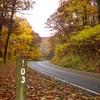 Fall Colors Near Milepost 103