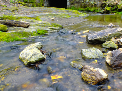 Holtwood Environmental Preserve