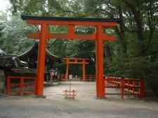 A Pair Of Torii Gates At Shimogamo Shrine