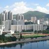 Shing Mun River Bank