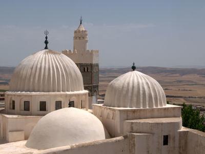 Sidi  Bou  Makhlouf Roof